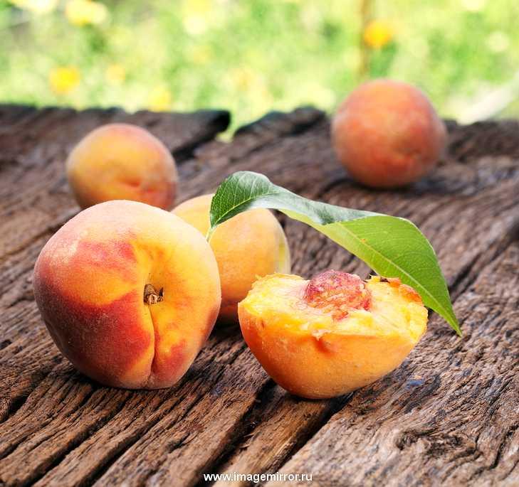 aromaty mesyatsa persikovaya parfyumeriya 0